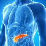 pancreas-amilasi.jpg