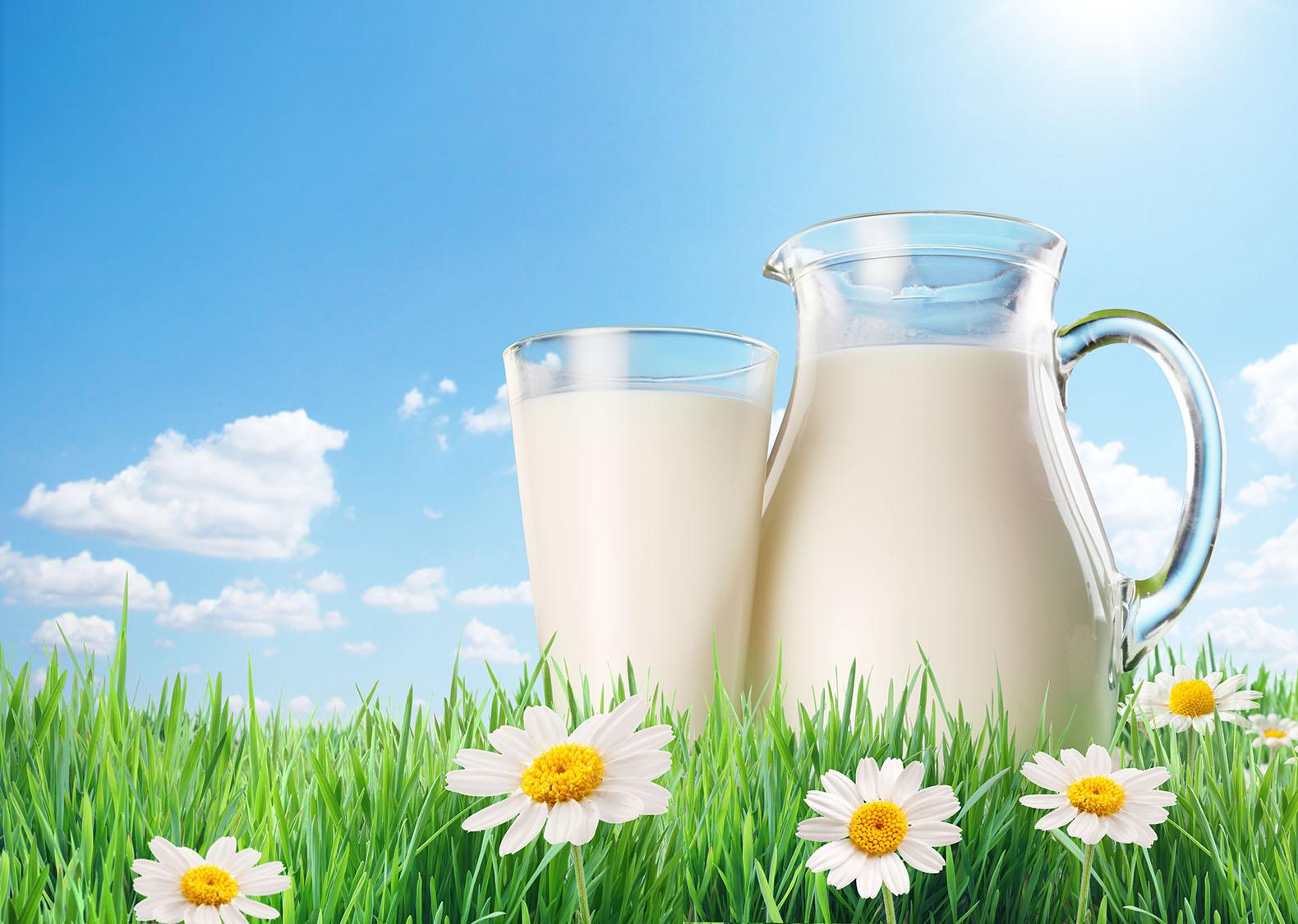 latte intero o scremato per perdere peso