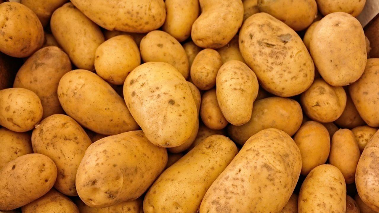 Riso con patate fa ingrassare