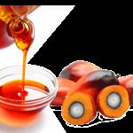 L'olio di palma è cancerogeno