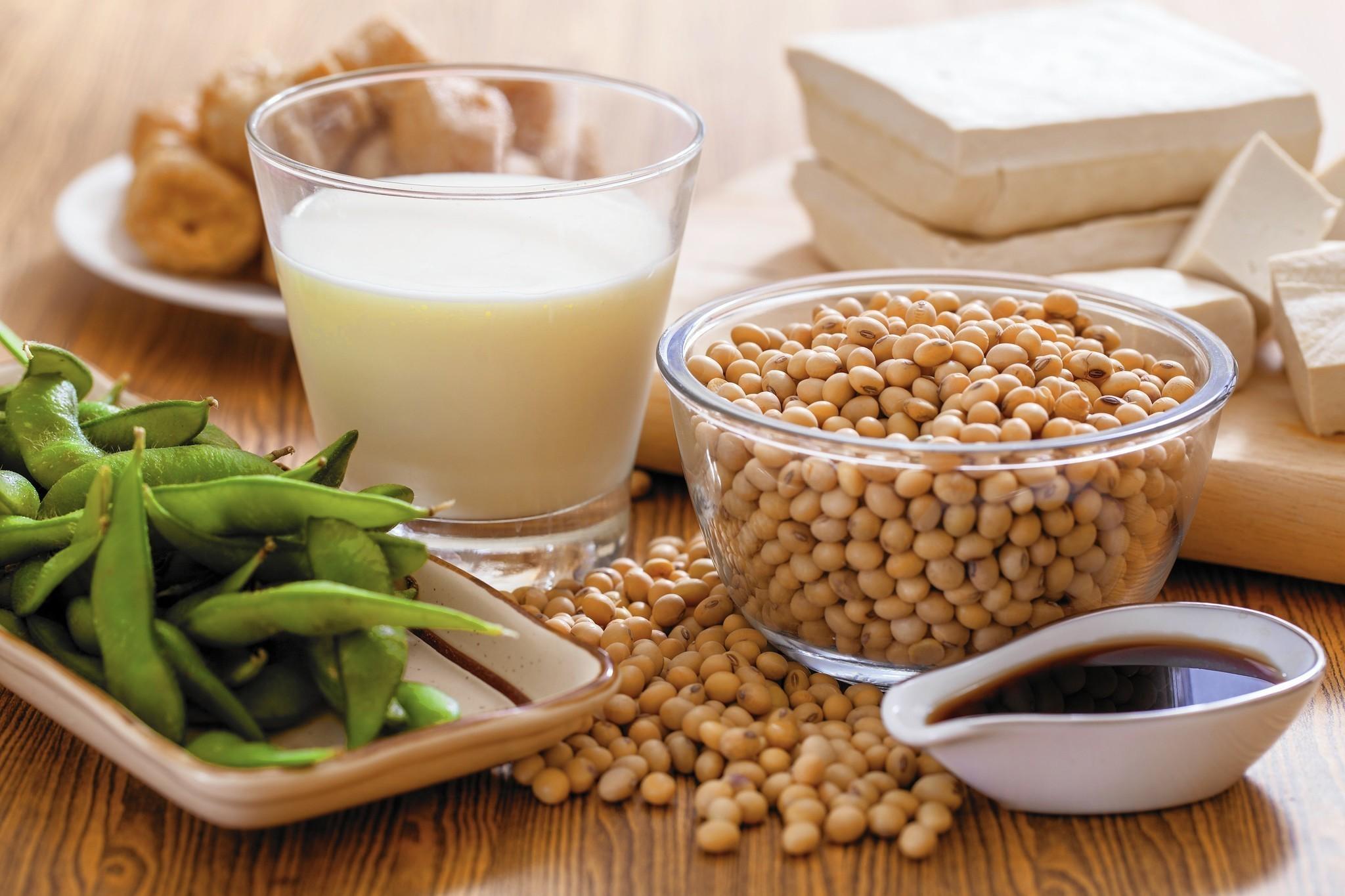 pane di soia per dieta