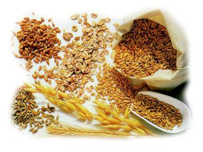 Quali sono i cereali integrali